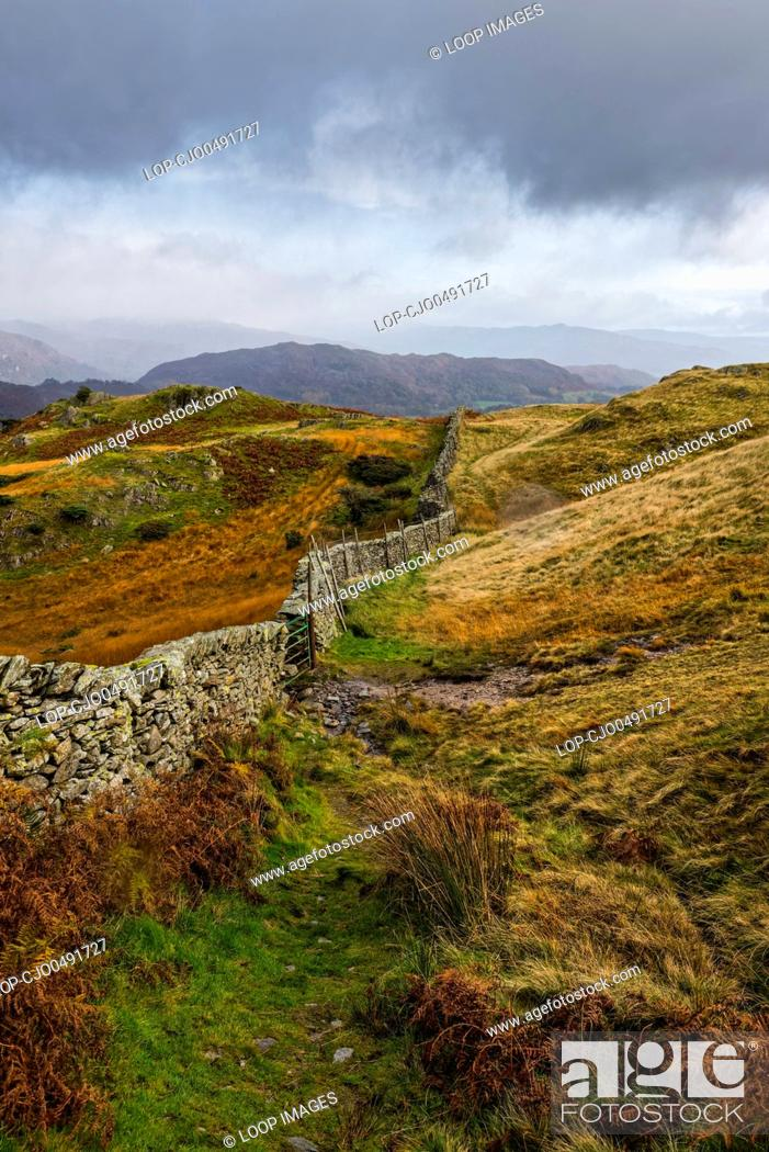 Stock Photo: Dry stone wall on Lingmoor Fell in the Lake District National Park.