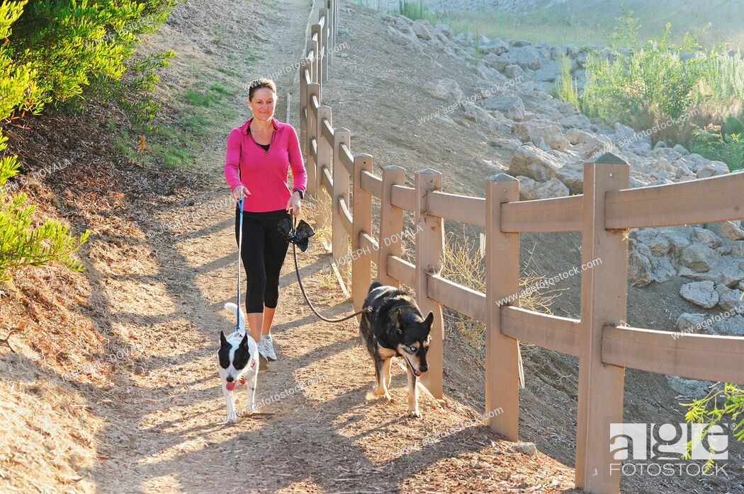 Stock Photo: Woman walking her dogs early morning, Thousand Oaks, California, USA.