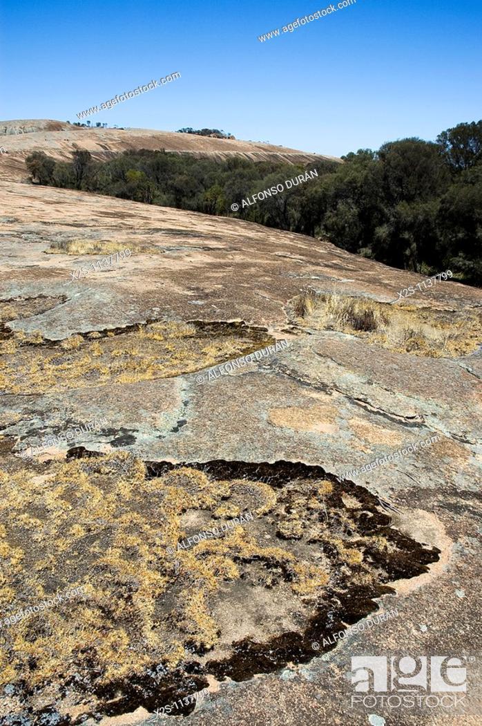 Stock Photo: Wave Rock, Western Australia, Australia.