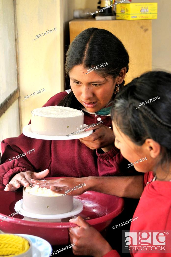 Stock Photo: Production of fresh cheese in the Penas Valley, two young girls squeezing cheese into round shape, Departamento Oruro, Bolivia, South America.