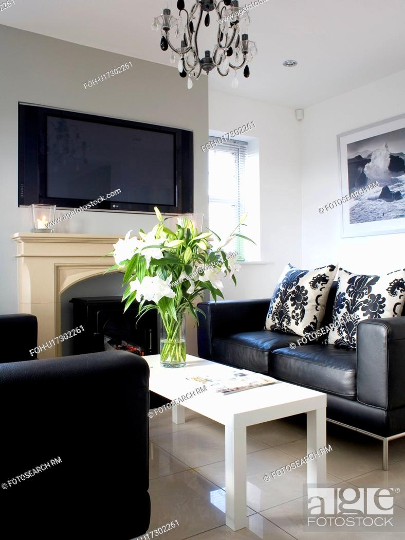 Black Leather Sofas And Simple White