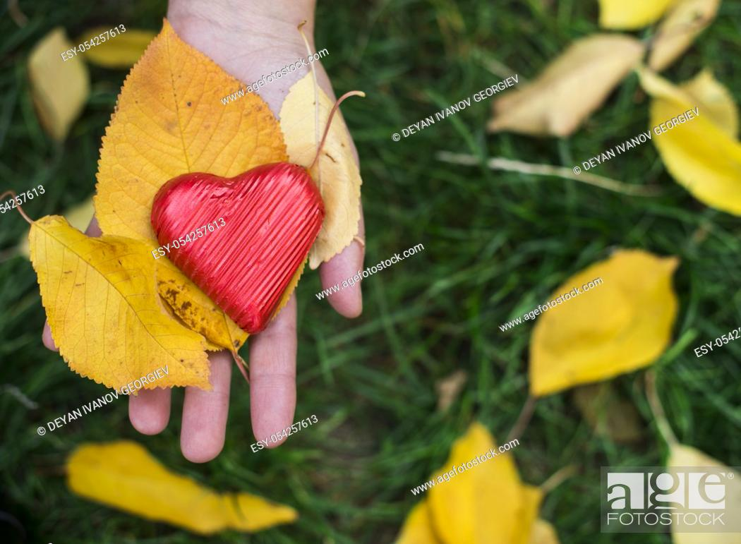 Stock Photo: Hand holding Red wrapped heart and autumn leafs.