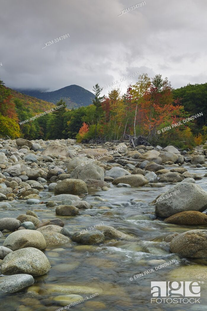 Stock Photo: Autumn foliage along the East Branch of the Pemigewasset River in Lincoln, New Hampshire during the autumn months.