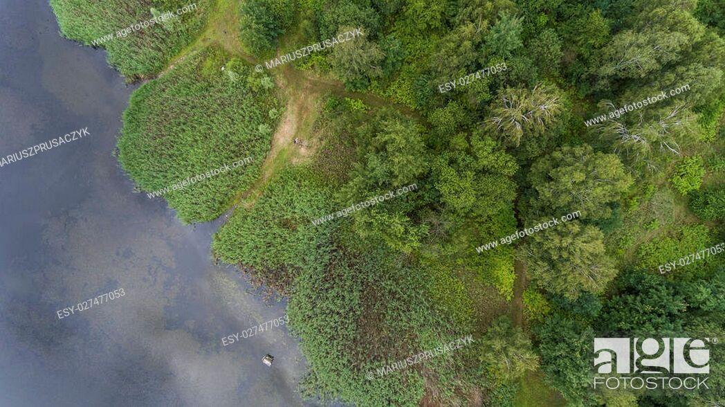 Imagen: Summer landscape. Green trees at riverbank in Poland.
