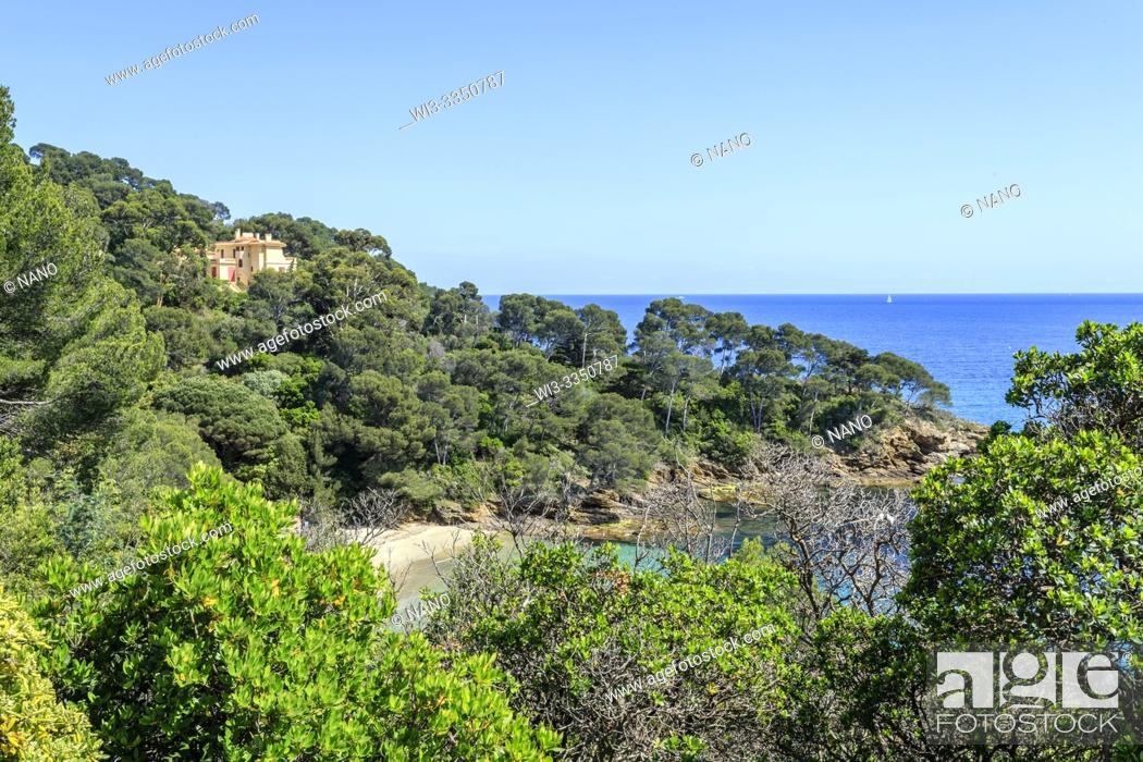 Stock Photo: France, Var, Rayol Canadel sur Mer, the Domaine du Rayol, Mediterranean garden, property of the Conservatoire du littoral.