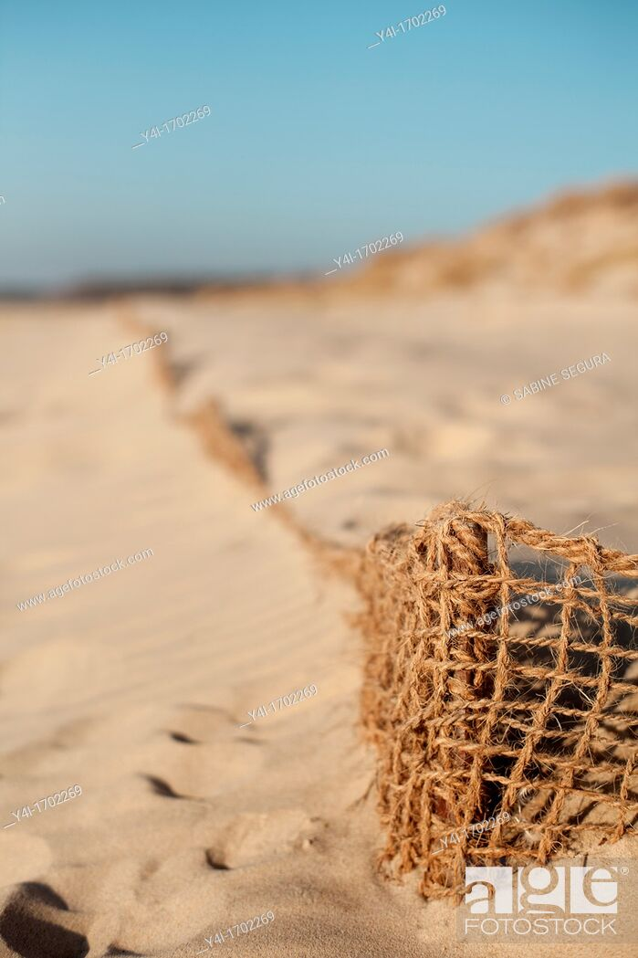 Stock Photo: Beach La Salie  La Teste de Buch  Gironde  Aquitaine  France.