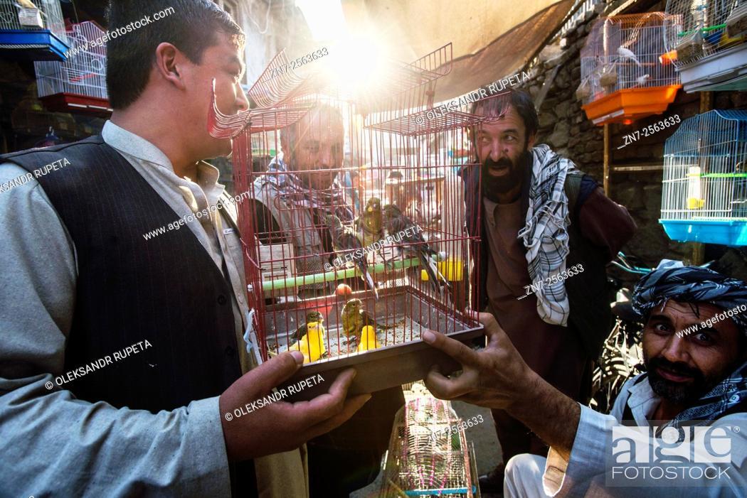 Stock Photo: Vendors selling canary at Ka Farushi Bird's Market, Kabul, Afghanistan.