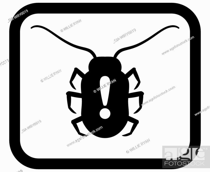 Imagen: Bug on white background.