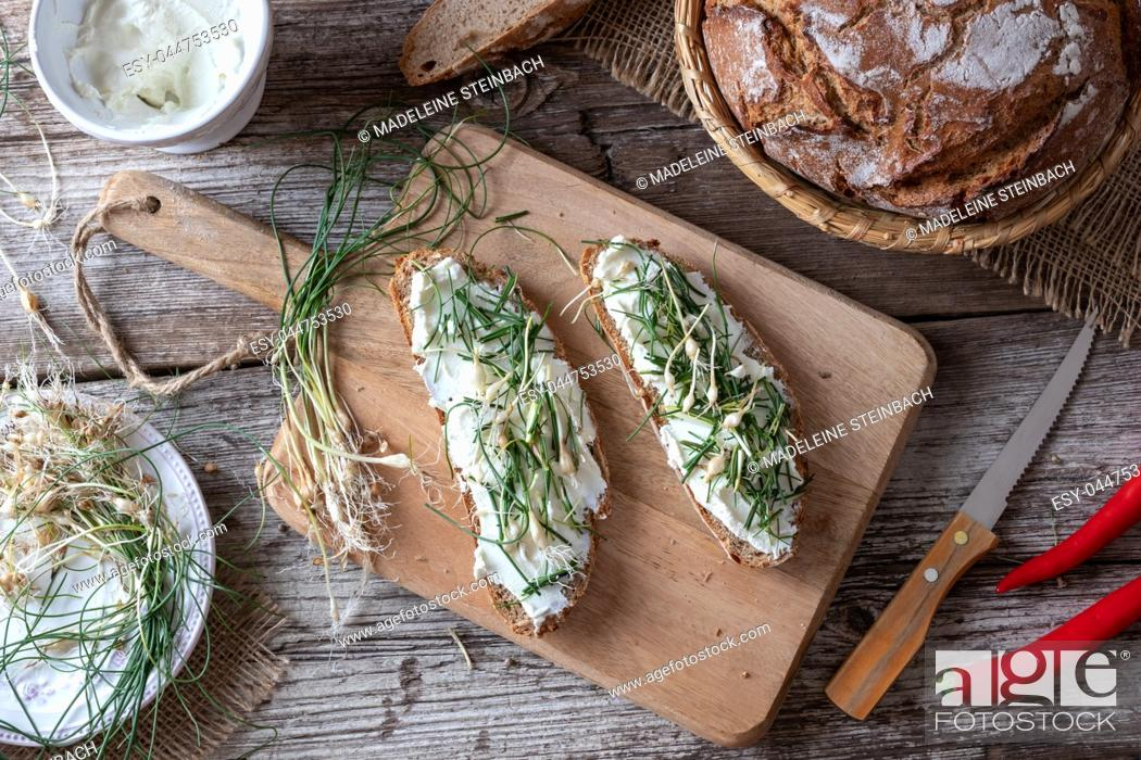 Stock Photo: Sourdough bread with cottage cheese and wild edible plant allium vineale, or crow garlic.