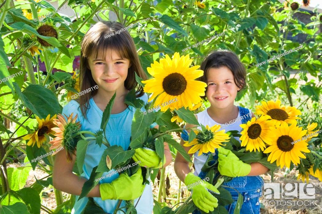 Stock Photo: Girls and sunflowers.