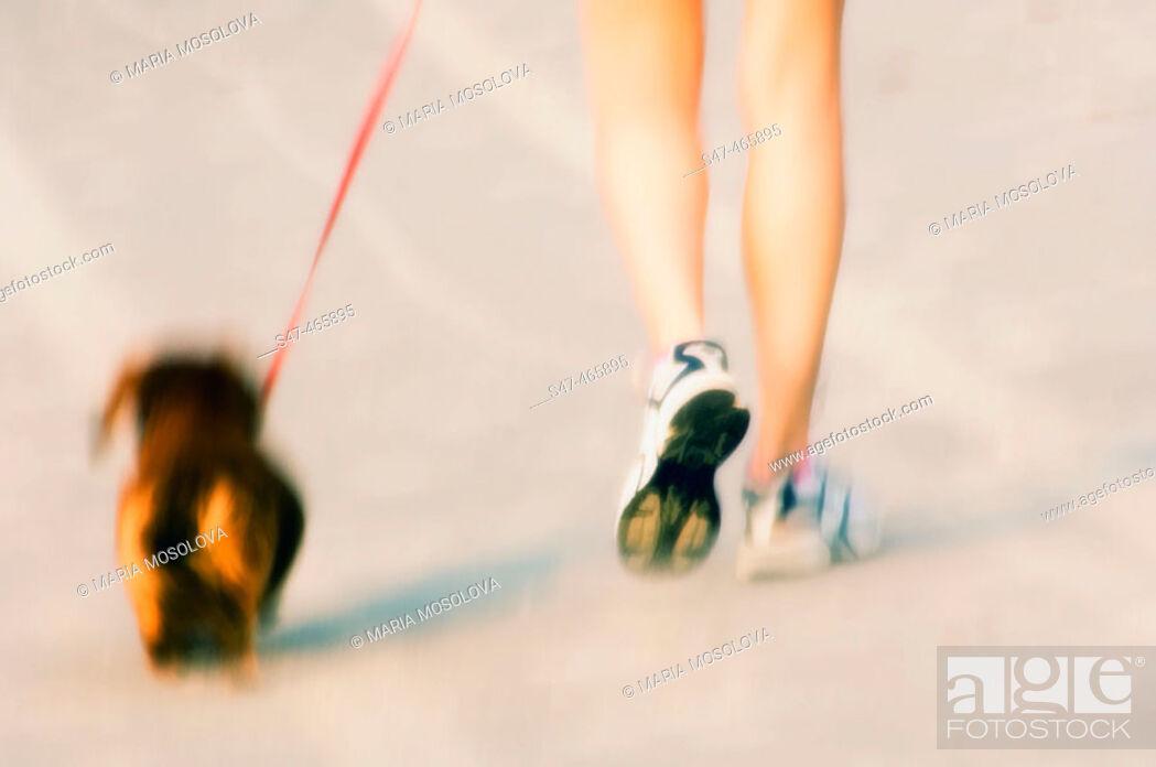 Stock Photo: Walking a dog on an ocean beach. July 2005, Virginia Beach, Virginia. USA.