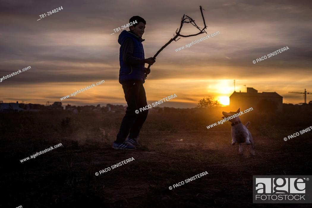 Stock Photo: Chico dog training, Navarra, Spain.