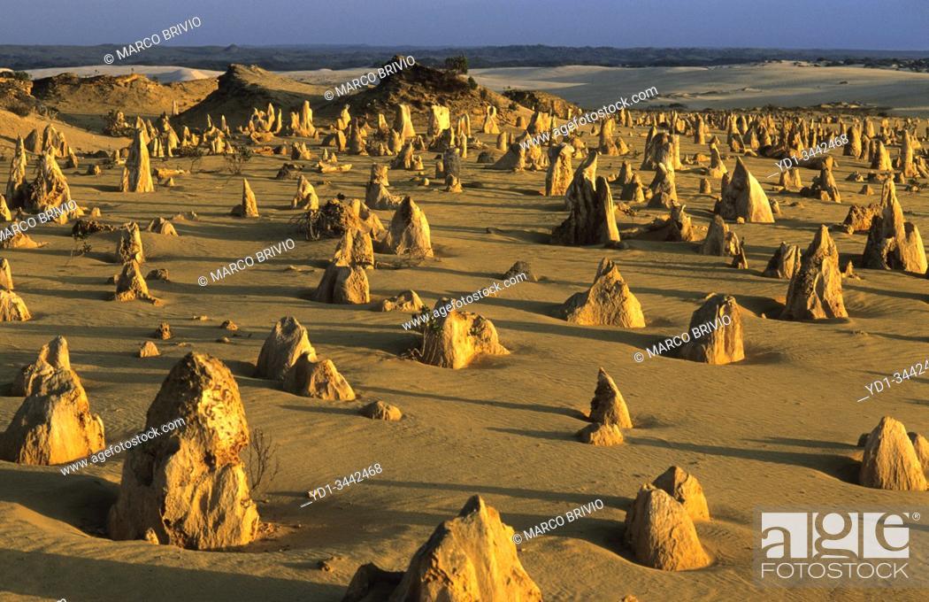 Stock Photo: Pinnacles Desert. Nambung National Park. Western Australia.
