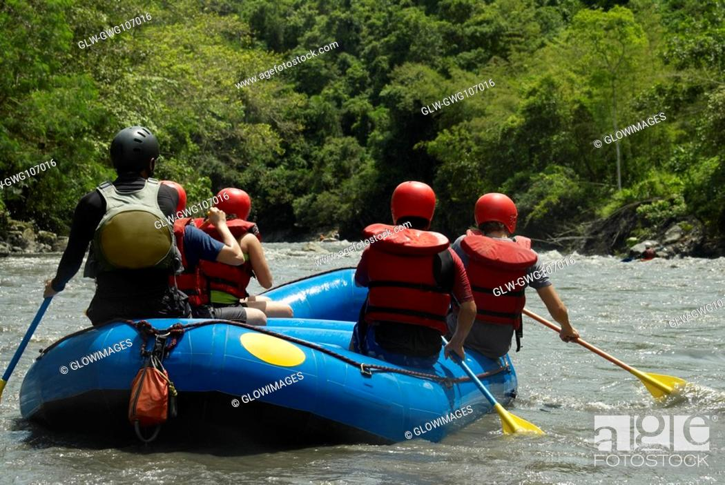 Stock Photo: Rear view of five people rafting in a river.