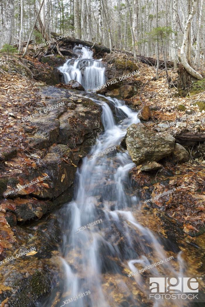 Stock Photo: Halfway Brook in Hart's Location, New Hampshire during the spring months. This brook is off the Nancy Pond Trail.