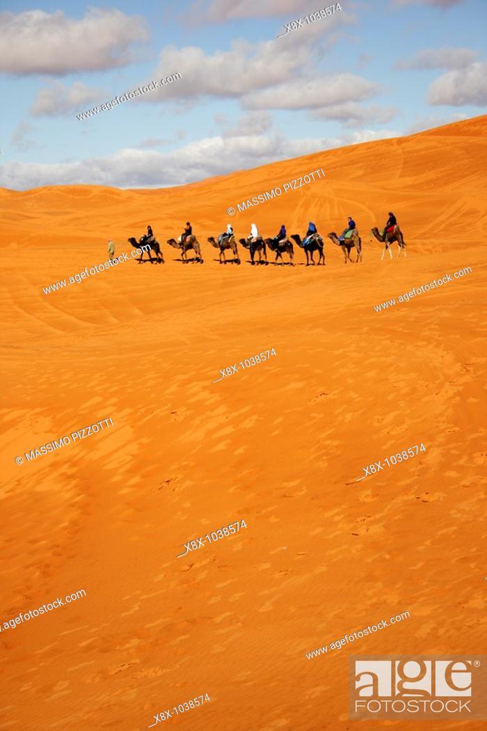 Stock Photo: Caravan in Erg Chebbi, Merzouga, Morocco.