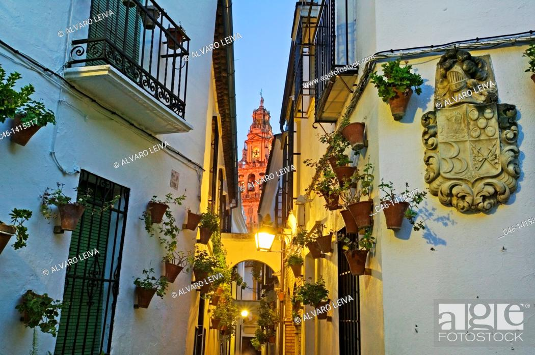 Stock Photo: Street and Minaret tower of the Great Mosque, Córdoba  Andalusia, Spain.