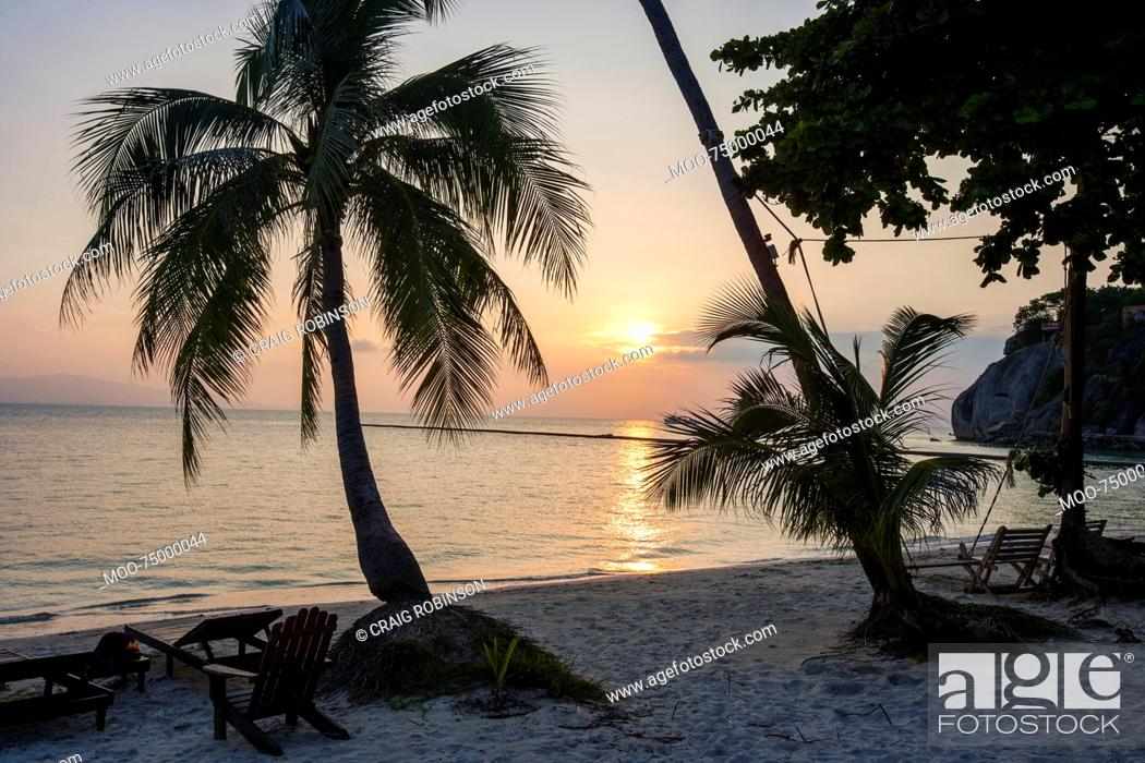 Stock Photo: Palm trees and deck chairs on beach at sunset, Koh Pha Ngan, Thailand.
