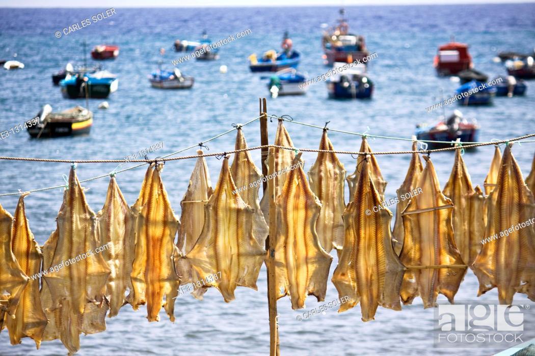 Stock Photo: Cod drying at Camara de Lobos Harbour, Madeira.