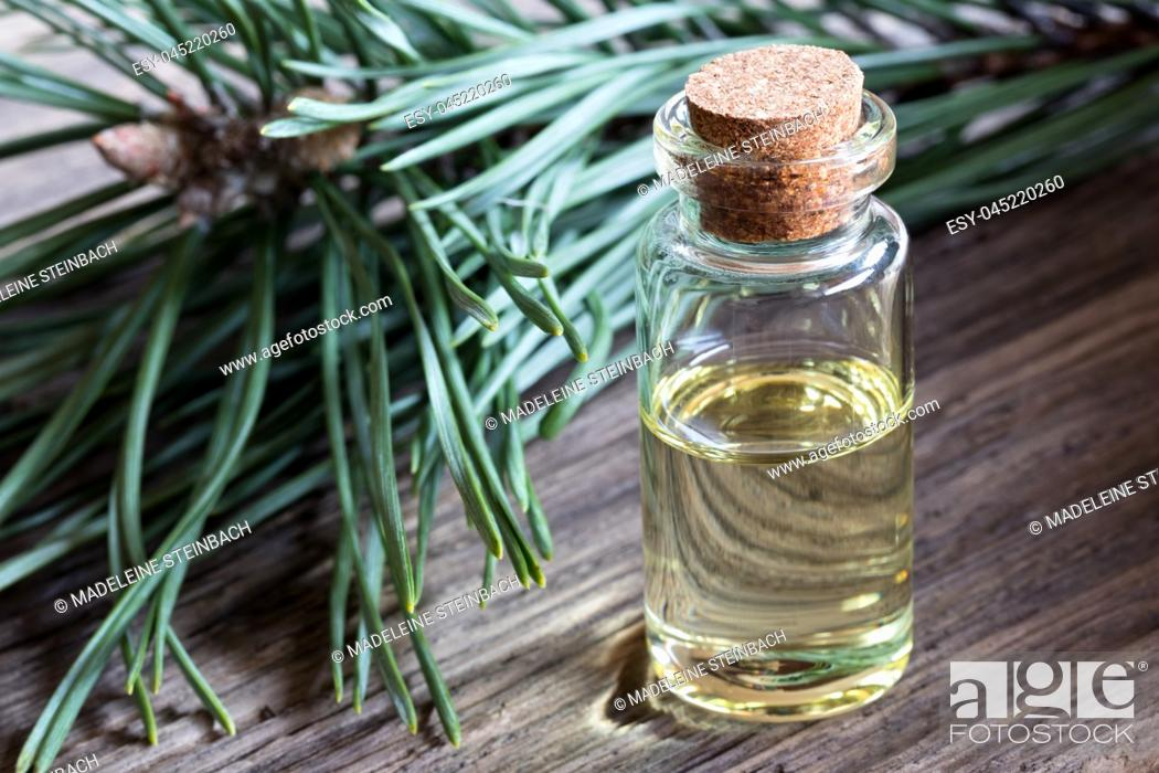 Stock Photo: A bottle of pine essential oil with pine branches in the background.