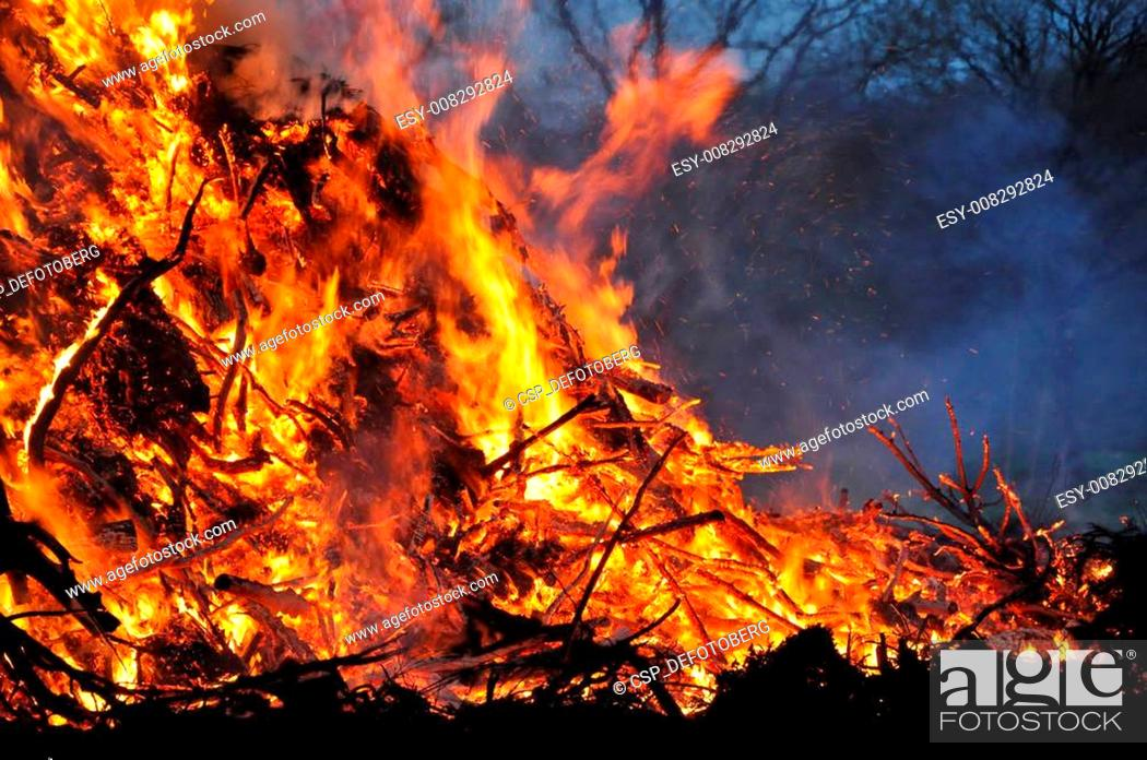Stock Photo: fire in the forest.