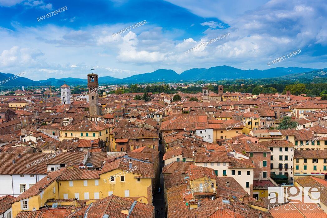 Stock Photo: View from Torre Guinigi to the old town of Lucca, Tuscany, Italy.