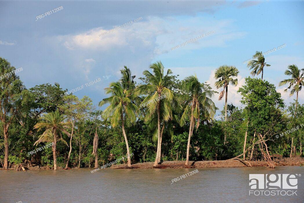 Imagen: Rupsha River Khulana, Bangladesh.