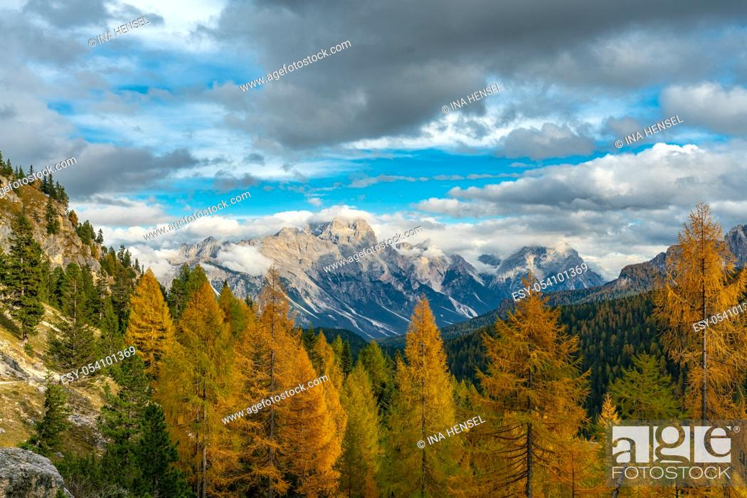 Stock Photo: Colourful autumn panorama in the italian Dolomites near Cortina D'Ampezzo with yellow larches in the foreground and the Faloria mountain in the background.