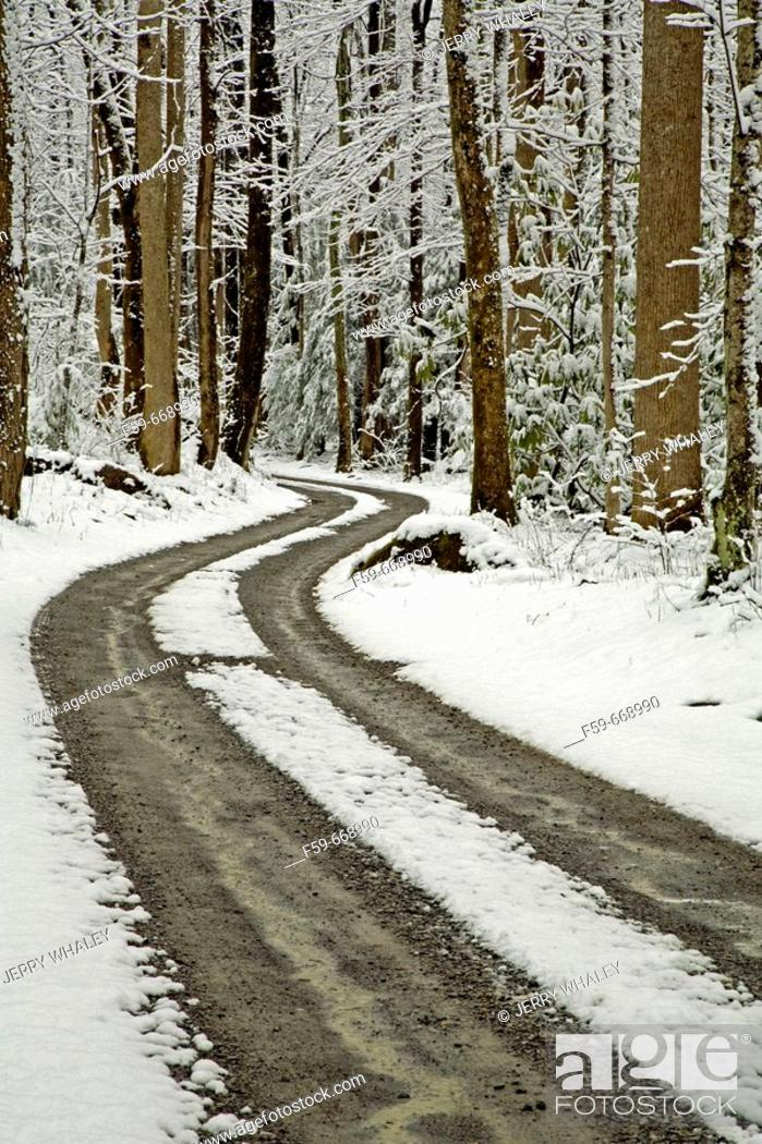 Stock Photo: Winter, Snow, Road, Tracks, Greenbrier, Great Smoky Mountains National Park, Tennessee, USA.