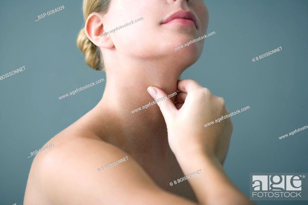 Stock Photo: THYROID Model.