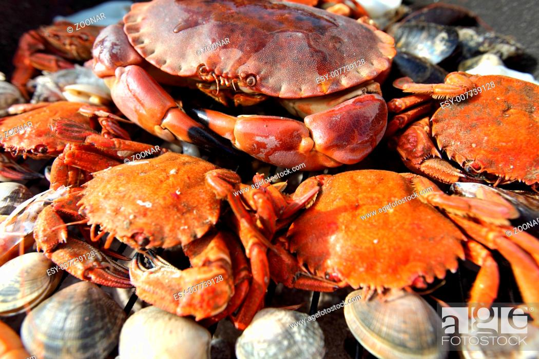 Stock Photo: crabs shrimps on charcoal grill.