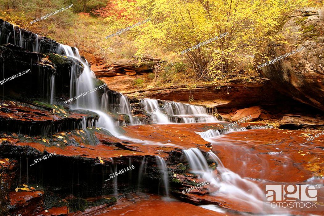 Stock Photo: Zion National Park.