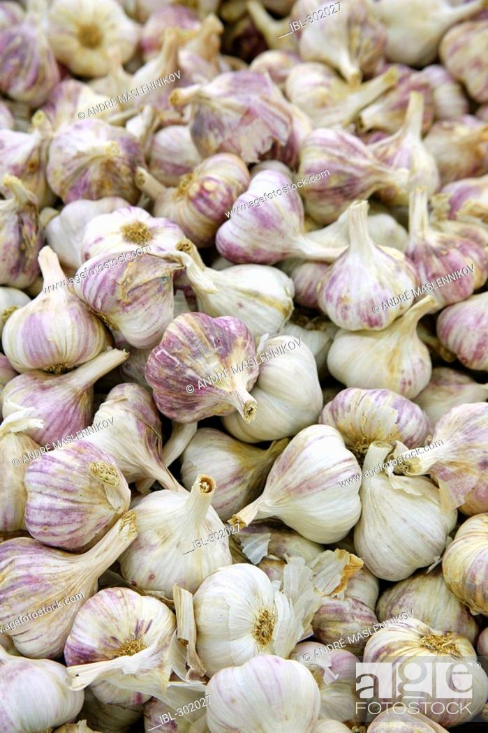 Stock Photo: Garlic.