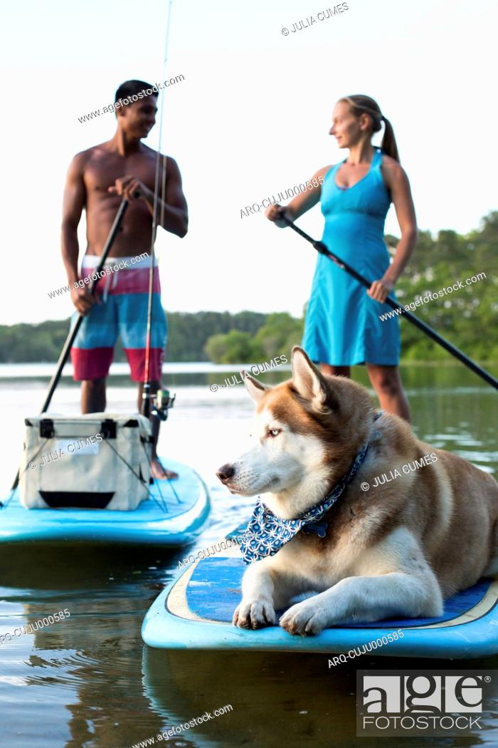 Stock Photo: Young Couple With Their Pet Dog On Stand Up Paddleboard.