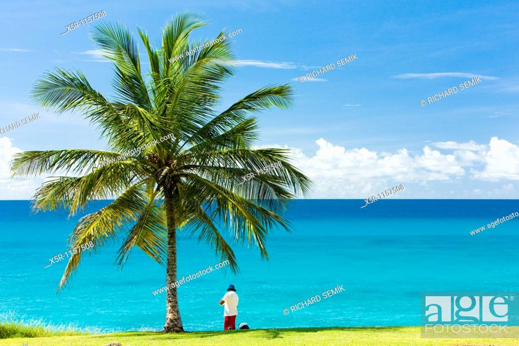 Stock Photo: Southern coast of Barbados, Caribbean.