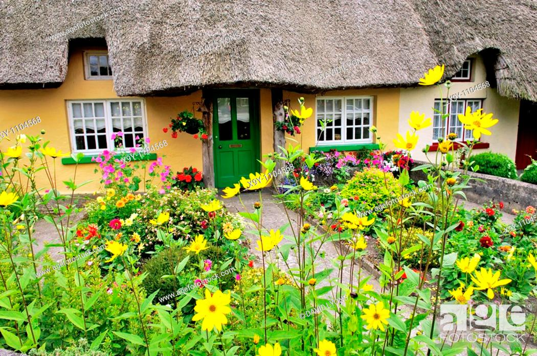Stock Photo: Picturesque traditional thatched cottage with garden summer flowers in town of Adare, County Limerick, Ireland.