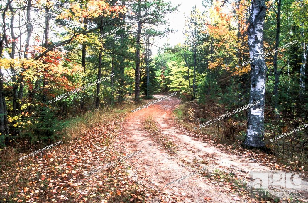 Stock Photo: ROAD NEAR THORNTON LAKE in the HIAWATHA National Forest Upper Peninsula Michigan.