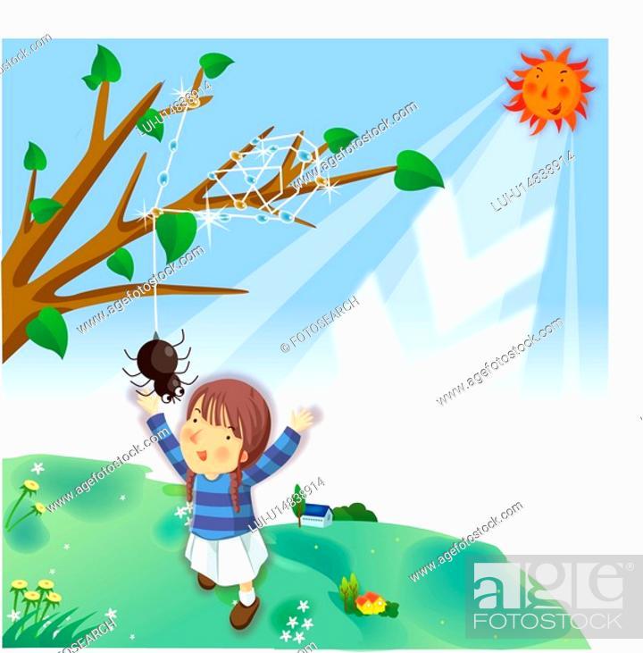 Stock Photo: dew, spider, sunlight, sun, hill, tree.