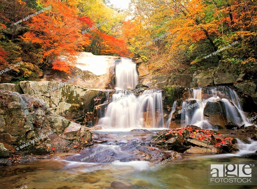 Stock Photo: valley in Autumn.