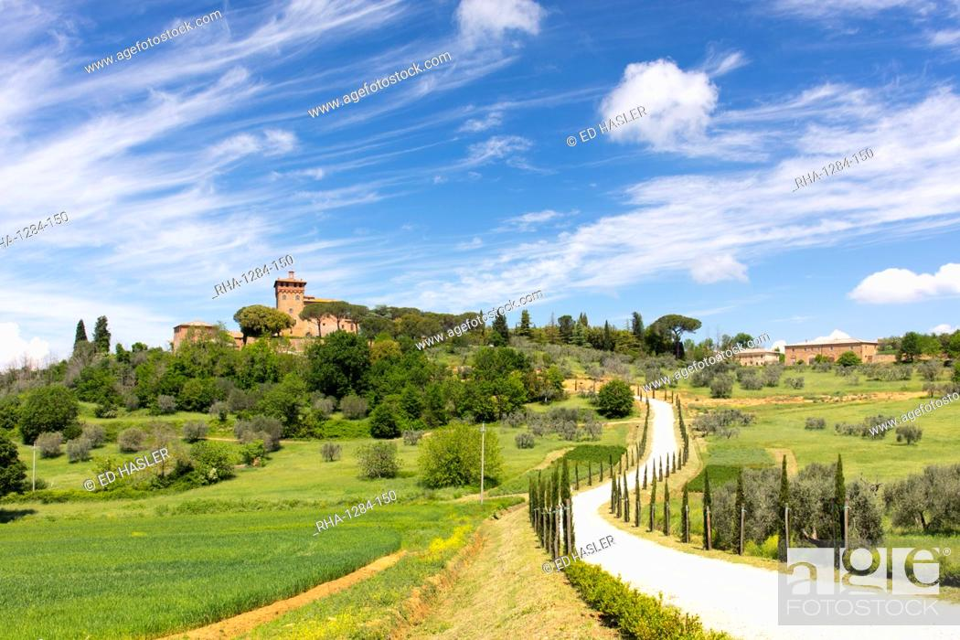 Imagen: Winding path and cypress trees leading to Palazzo Massaini under blue skies near Pienza, Tuscany, Italy, Europe.