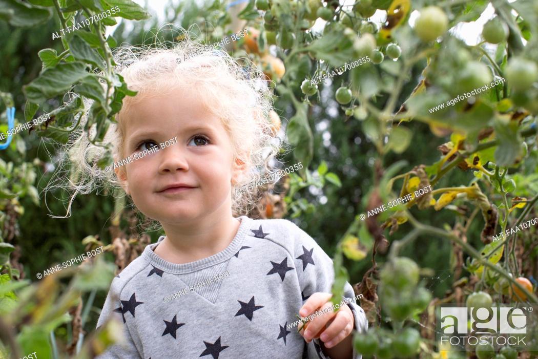 Stock Photo: Little girl in vegetable garden.