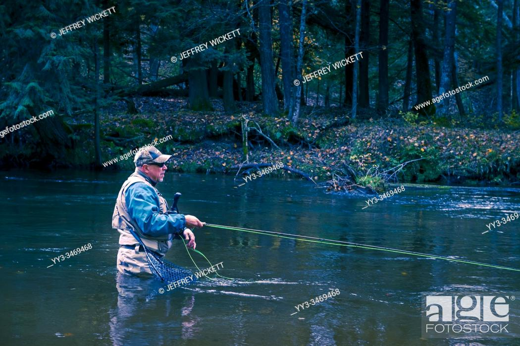 Imagen: Fly fisherman casting for steelhead trout in the Pere Marquette River near Walhalla, Michigan, USA.
