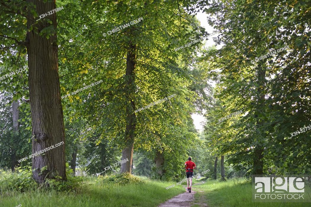 Imagen: jogger on a path in the Park of the Chateau of Rambouillet, Forest of Rambouillet, Haute Vallee de Chevreuse Regional Natural Park, Yvelines department.