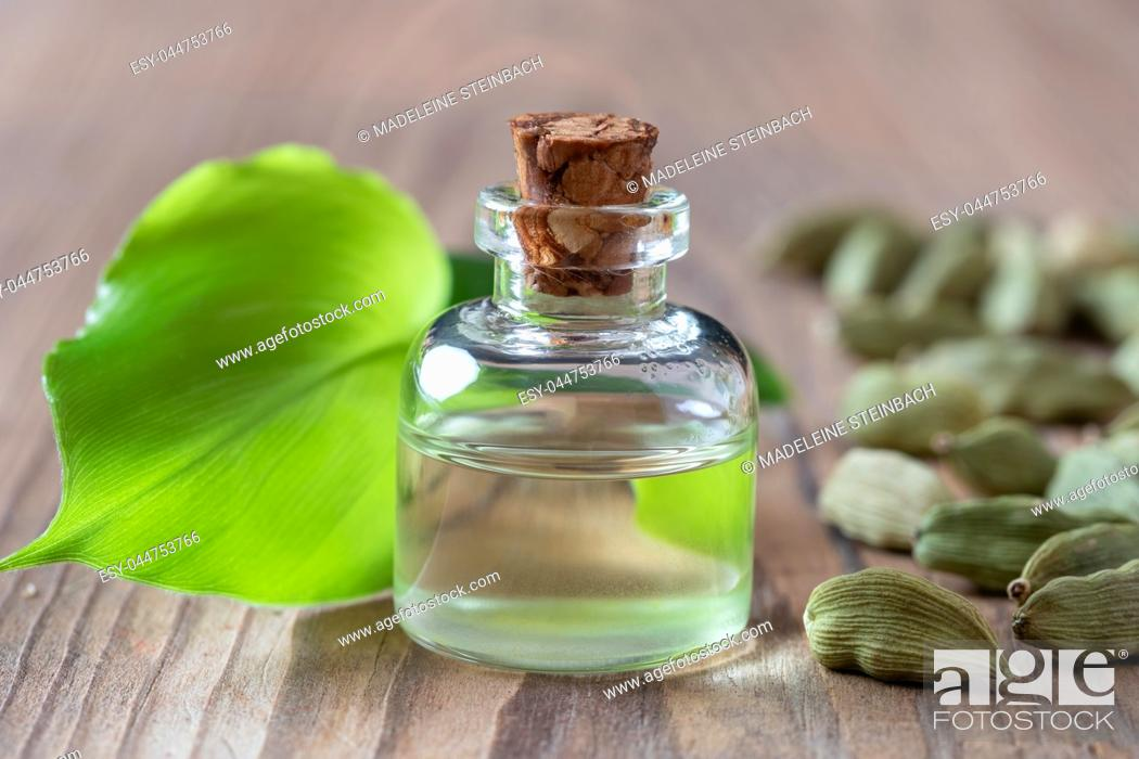Stock Photo: A bottle of essential oil with young cardamon leaves and seeds.