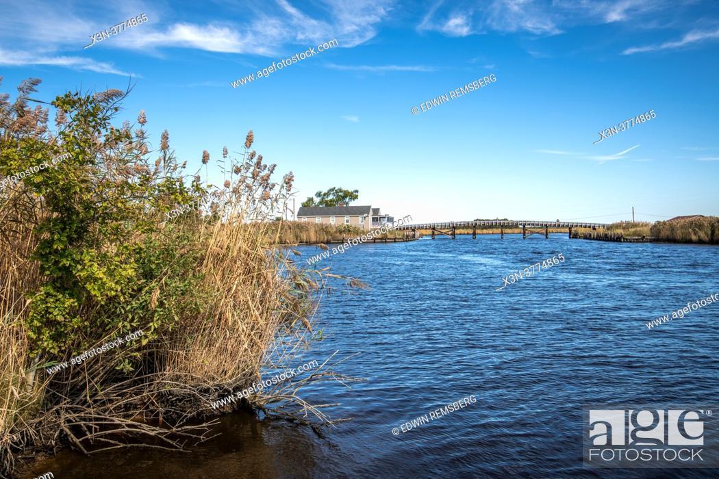 Stock Photo: Blackwater wildlife refuge.