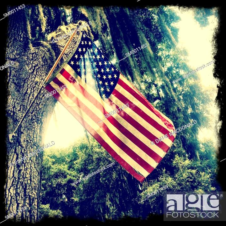 Stock Photo: Tattered American flag hanging from a tree.