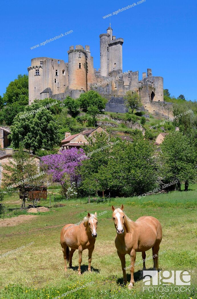 Stock Photo: France, Lot-et-Garonne, the castle of Bonaguil.