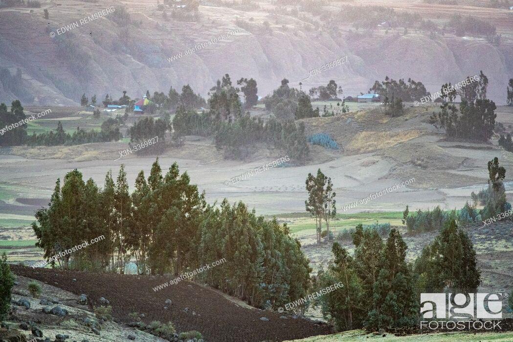Stock Photo: The rolling hillsides of Debre Berhan, Ethiopia.