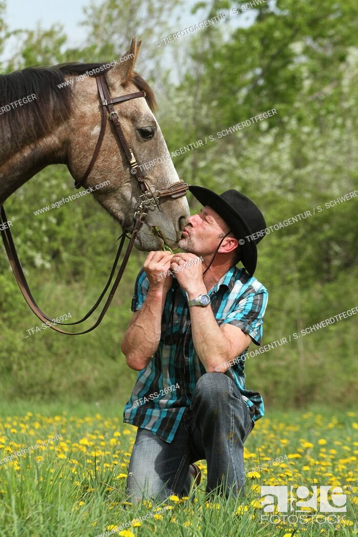 Imagen: man and American Paint Horse.