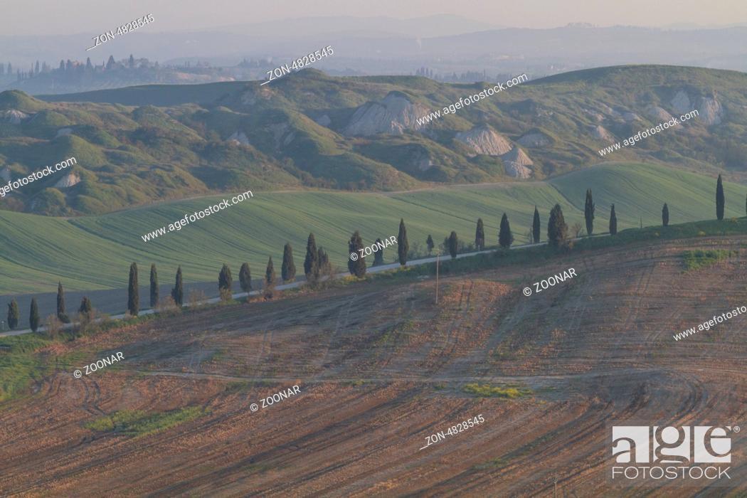 Stock Photo: Tuscany landscape in morning.
